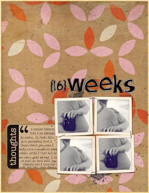 16_weeks_web